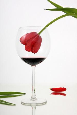 alcoholismo: Belleza se desvanece en el vino. El problema del alcoholismo femenino. Foto de archivo