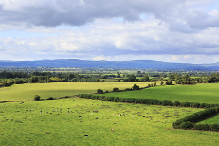 county tipperary: Beautiful summer landscape. View from the Rock of Cashel. County Tipperary in Ireland.