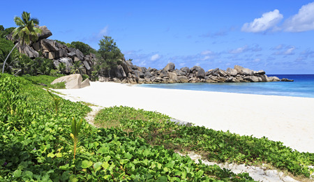 digue: Beautiful beach Grande Anse. Island of La Digue in Seychelles.