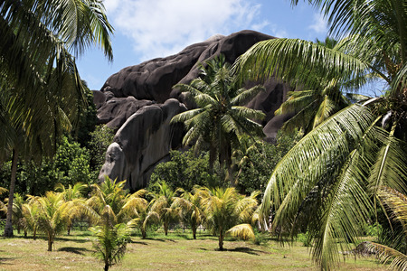 Beautiful enormous black granite rocks in a palm grove. Island of La Digue in Seychelles. Stock Photo