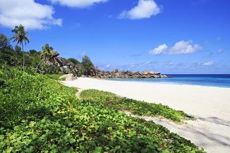 digue: Beach Grande Anse. Island of La Digue in Seychelles.