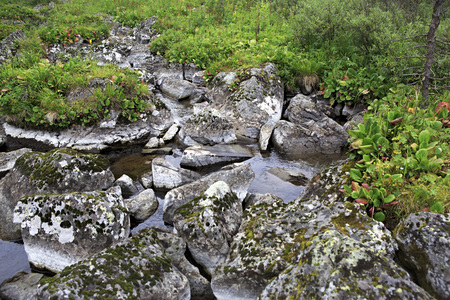 western slope: Duct with stones between the fifth and sixth Karakol lakes. Republic of Altai.