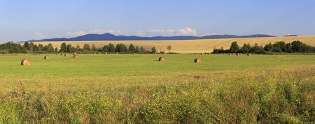 rebelling: Beautiful panorama the sloping fields and haystacks. Altai Krai in Russia.