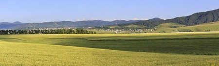 belokurikha: Beautiful panorama agricultural fields and the town of Belokurikha. Altai Krai in Russia.