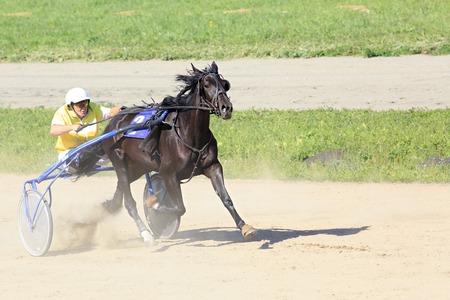 Novotyryshkino, Russia - August 01, 2015: Trotting Races at the Hippodrome Sibirskoe podvorie 報道画像