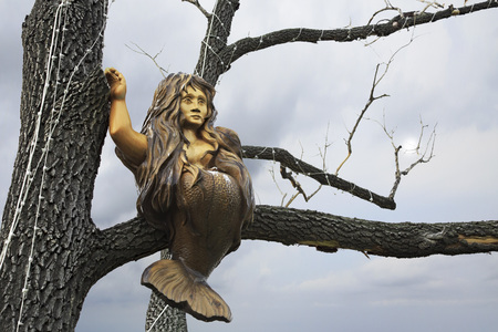 woodland sculpture: Novotyryshkino, Russia - July 31, 2013: Mermaid sitting on the branches. Wooden sculptures based on Pushkins fairy tales. Tourist Complex Siberian Podvorye.