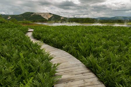 Wooden path in the Uzon Caldera. Kronotsky Nature Reserve on Kamchatka Peninsula.