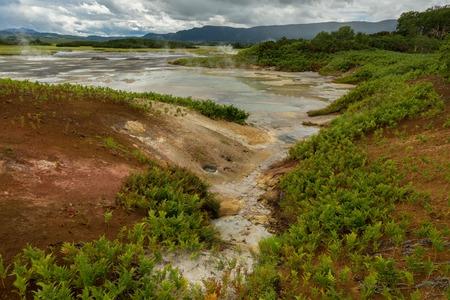 hot temper: Hermoso paisaje de verano en la caldera de Uzon. Reserva natural de Kronotsky en la península de Kamchatka. Foto de archivo