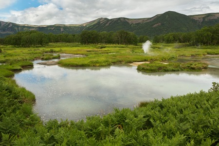 hot temper: Beautiful summer landscape in the Uzon Caldera. Kronotsky Nature Reserve on Kamchatka Peninsula. Foto de archivo