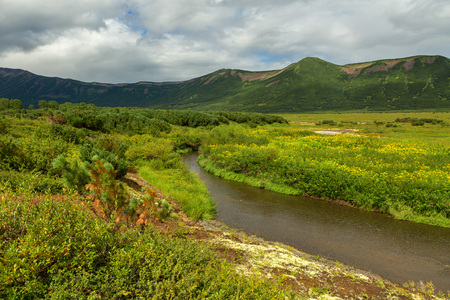 Beautiful summer landscape in the Uzon Caldera. Kronotsky Nature Reserve on Kamchatka Peninsula. Stock Photo