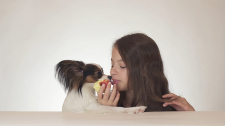Beautiful teen girl and dog Continental Toy Spaniel Papillon eating tasty fresh red apple on a white background