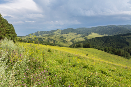 Beautiful summer landscape in the Altai Mountains