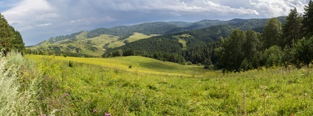 Beautiful panorama of the summer landscape in the Altai Mountains