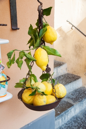 Some lemons with leaf in a old balance