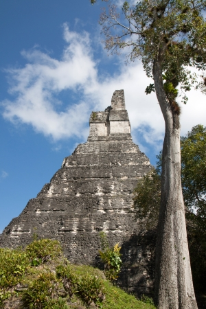 tourism in belize: Tikal ruines and piramyds in Guatemala Stock Photo
