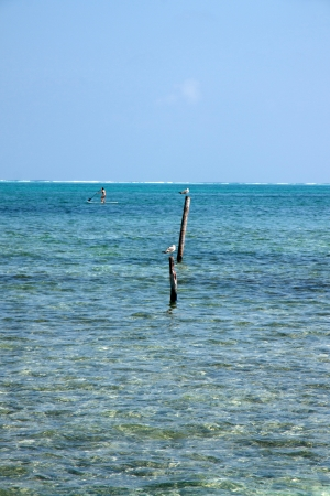 tourism in belize: The sea in Caye Caulker, Belize