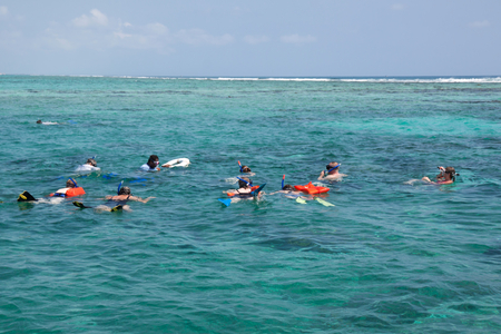 A group of turist are snorkeling photo