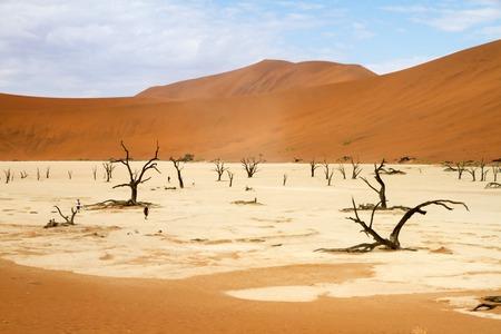 vlei: The red sand dunes of Sossusvlei desert, Namibia Stock Photo