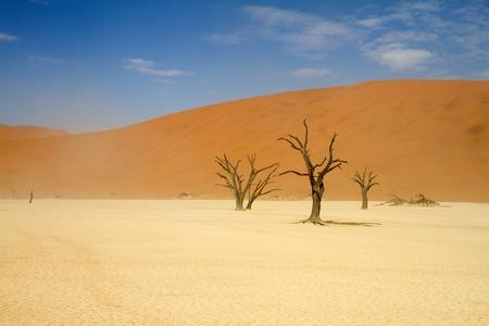 windy: A windy Sossusvlei desert, Namibia