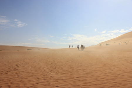 strong wind: Some people walking in the desert with strong wind