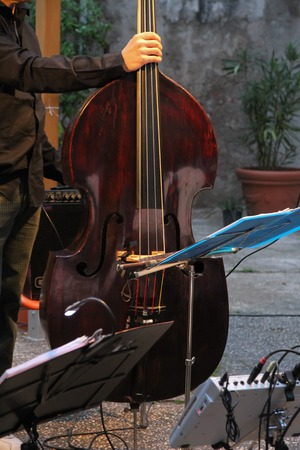 cellist: A cellist playing his instrument in a concert