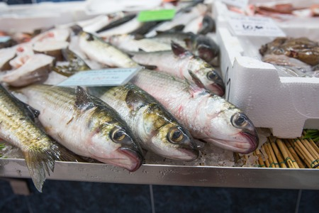 fishy: Some fishes exposed at the fish market