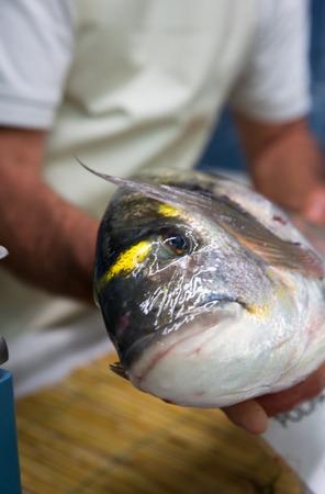 sea bream: Fisherman with a big sea bream Stock Photo