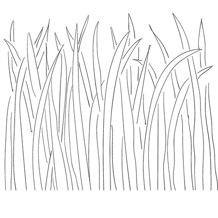 Illustration of grass and plant outlines 2 Vector