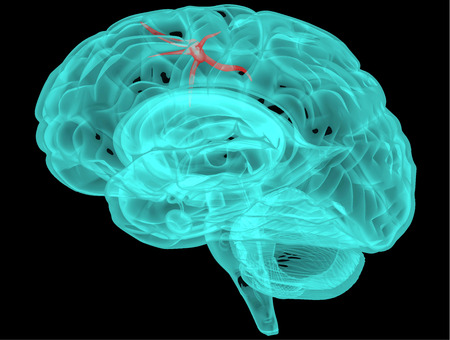 Concept of an Active Human Brain on a Dark Background  Vector