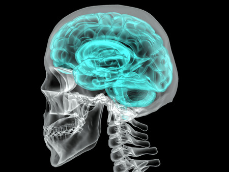 Concept of an Active Human Brain on a Dark Background