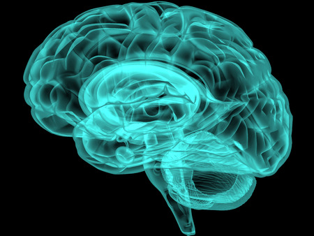brain: Concept of an Active Human Brain on a Dark Background