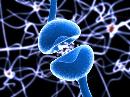 Anatomie van een typisch menselijk neuron axon, synaps, dendriet, mitochondrion, myelineschede, knoop Ranvier en Schwann cel. Vector diagram Vector