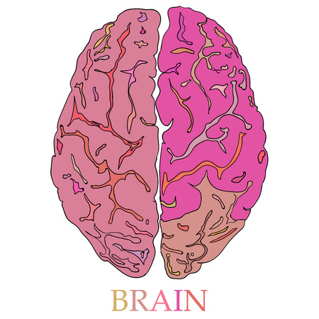 minimal style: Minimal style Brain Icon Illustration with Creative Business Concept color