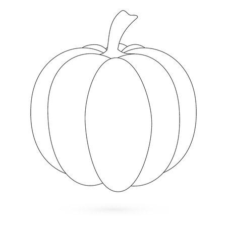 fruit stalk: Pumpkin. Flat Design Style. Vector illustration 2