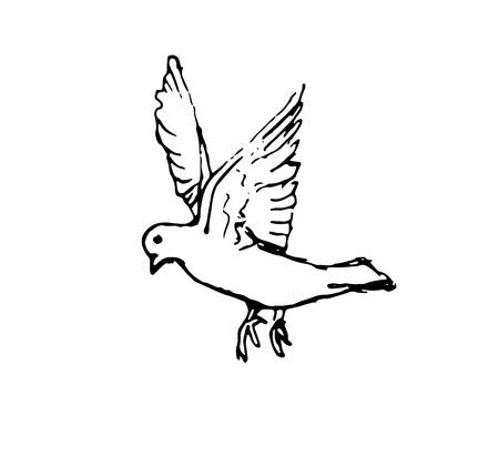 Vecrot sketch bove on white backrgound No war