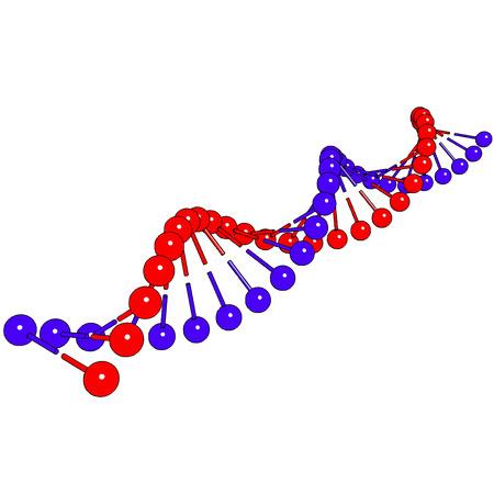 macromolecule: DNA shapes molecule on white background Vector image