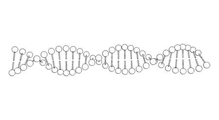 ADN da forma molécula fondo blanco Vector de la imagen de Ilustración de vector