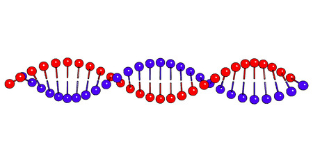 thymine: DNA shapes molecule on white background Vector image