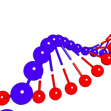 DNA shapes molecule on white background Vector image