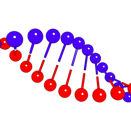 guanine: DNA shapes molecule on white background Vector image