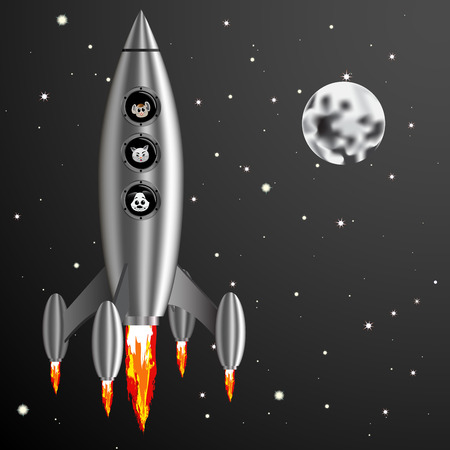 cat and mouse: Vector Illustration rocket and dog cat mouse fly into space