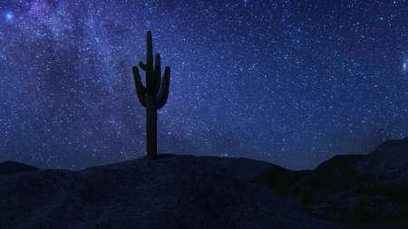 Cactus night Beautiful desert landscape glorious view. 3d render