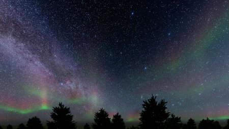 Stray night Northern lights of spruce Winter landscape 3d render