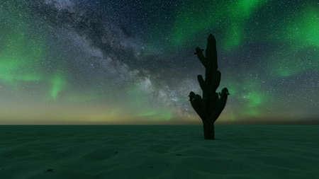 Sand dunes cactus night northern lights aurora 3d render Standard-Bild