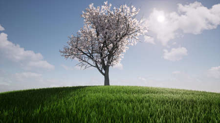 One tree growth Ecology Agriculture concept environment Nature spring season Environmental Green grass hill 3d render