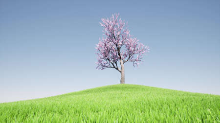 One tree on the grass hill Nature landscape spring season 3d render