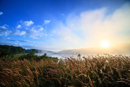 foggy riverside at summer sunrise with wet grass in foreground