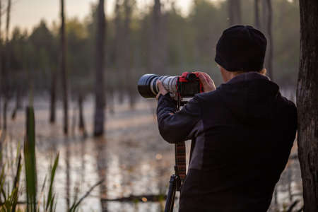 professional photographer shooting wild in early morning at summer swamp area with telephoto lens on a tripod