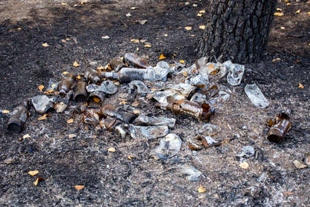 burned pile of trash under tree - close-up with selective focus