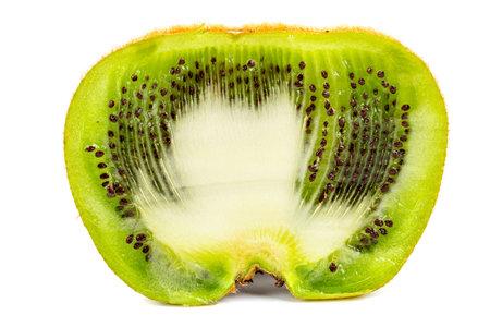one ugly kiwi mutant fruit isolated on white background, cutted